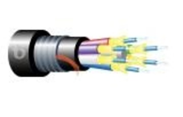 Teldor-95B73FM04B Armored Fiber Optic 4 Fiber Outdoor Breakout Cable 鎧裝緊式室外光纖電纜產品圖