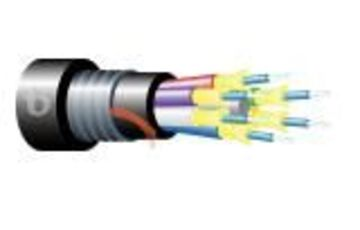 Teldor-95B73FM06B Armored Fiber Optic 6 Fiber Outdoor Breakout Cable 鎧裝緊式室外光纖電纜產品圖